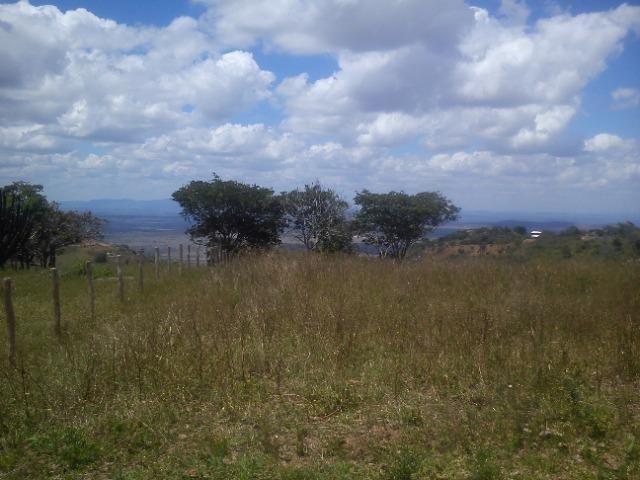 Terreno Serra Negra - Foto 3