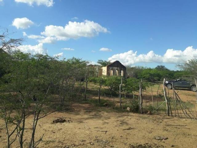 Fazenda para venda em santa cruz do capibaribe, centro - Foto 15