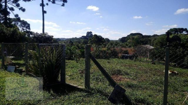 Chácara rural à venda, Campo Largo da Roseira, São José dos Pinhais. - Foto 12
