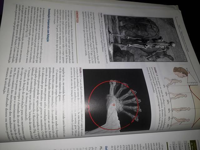 Cinesiologia do aparelho musculoesqueletico - Foto 2