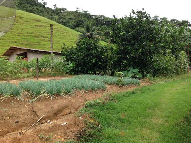 Propriedade de 5.000 m² em Cabeça Quebrada, Guarapari - Foto 16