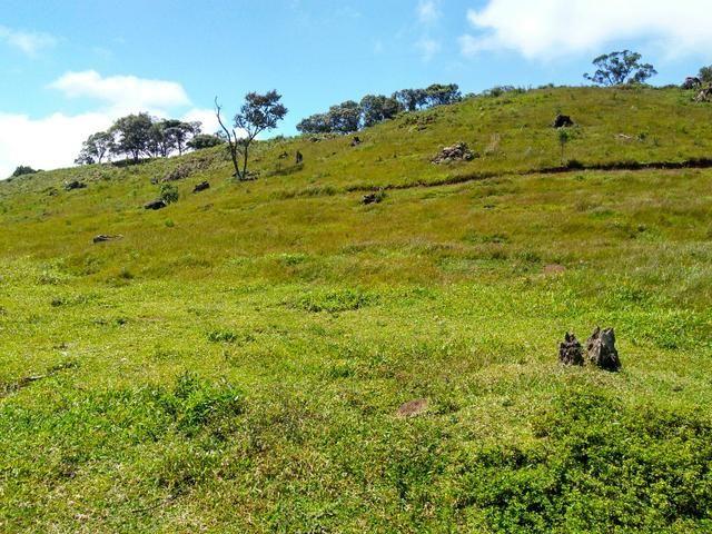 Fazenda de 123 Alqueires .40 Alq de Pasto . Guará ( Guarapuava PR ) - Foto 3