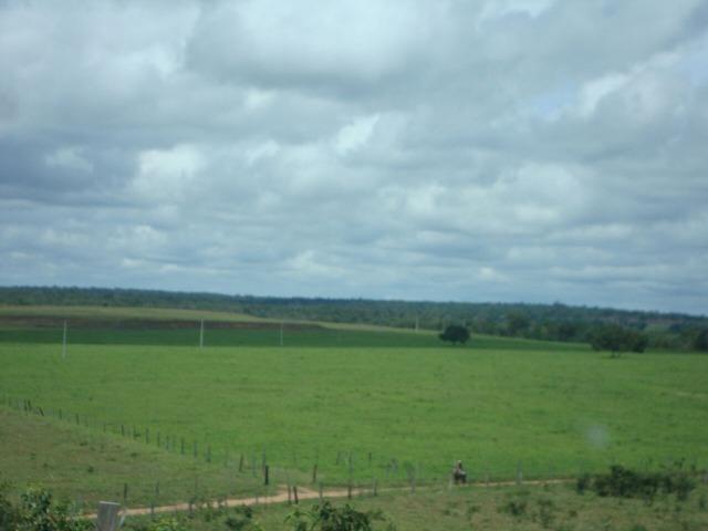 Fazenda em Pedro Afonso - 270 km Distante de Palmas - Foto 8