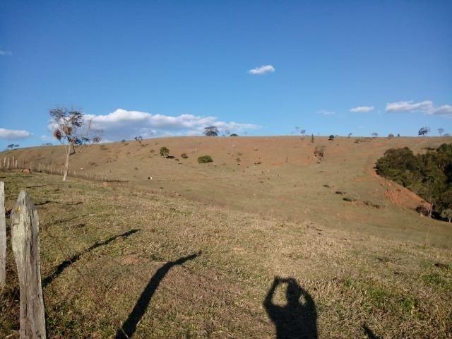Área Guara x Cunha - Foto 4