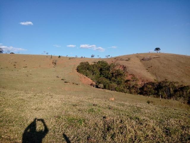Área Guara x Cunha - Foto 6