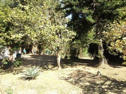 Terreno rural à venda, Venda Nova, Teresópolis - TE0060. - Foto 13