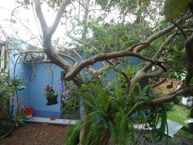 (CA1113) Casa na Cohab, Santo Ângelo, RS - Foto 3