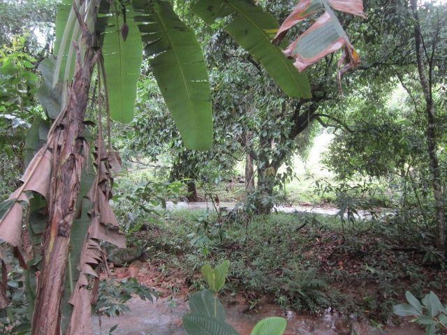 Propriedade de 5.000 m² em Cabeça Quebrada, Guarapari - Foto 17