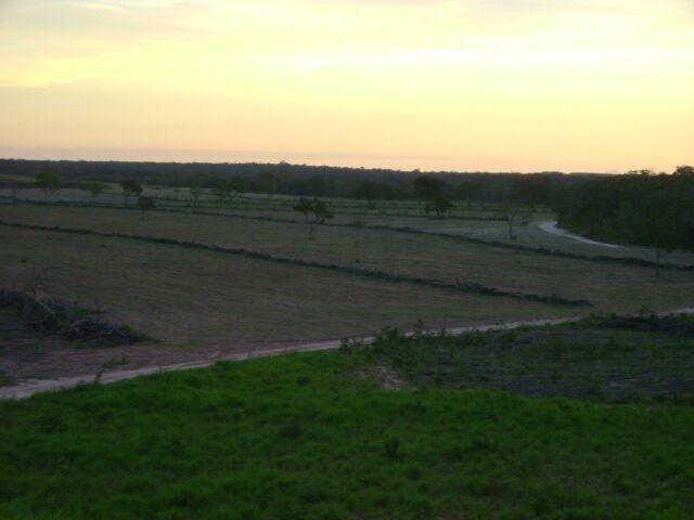 Fazenda em Pedro Afonso - 270 km Distante de Palmas - Foto 4