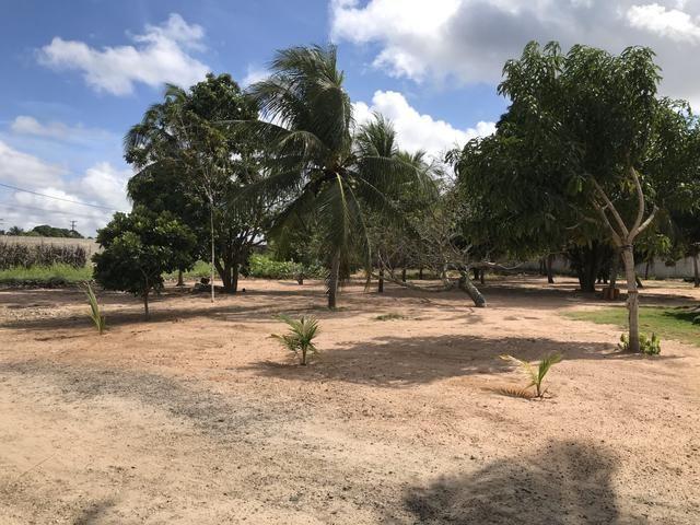 Vendo Área / Terreno na BR 101 Com 10.000m² Próx a Volvo, Baldessar Rondon e Rio Grandense - Foto 13