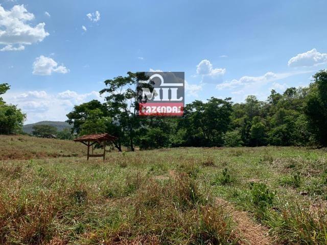 Fazenda 24 Alqueires ( 116.16 hectares )- Santa Cruz \ Cristianópolis-GO - Foto 9