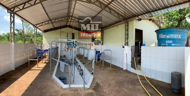 Fazenda 24 Alqueires ( 116.16 hectares )- Santa Cruz \ Cristianópolis-GO - Foto 10