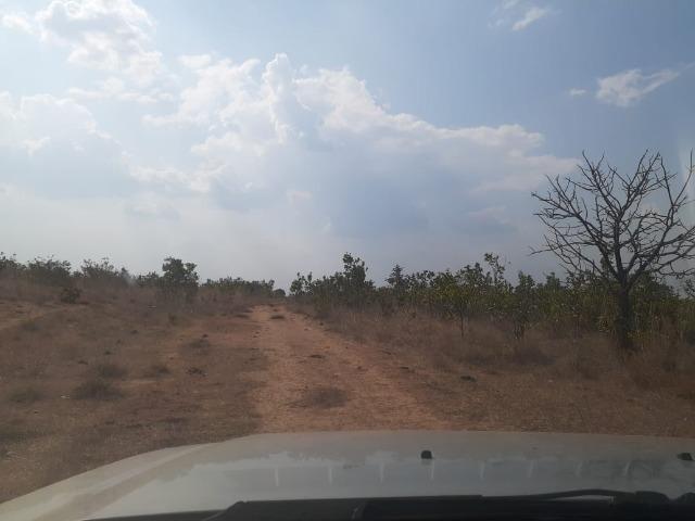 Fazenda venda ou arrendamento lavoura paranatinga - Foto 4