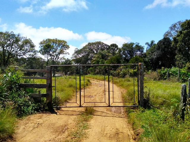 Fazenda de 123 Alqueires .40 Alq de Pasto . Guará ( Guarapuava PR ) - Foto 9