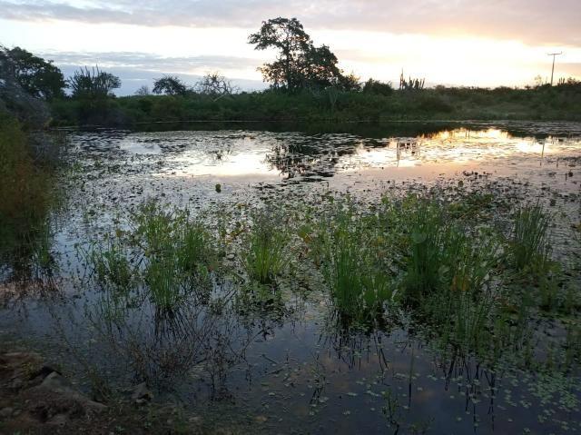 Fazenda Malhada Nova - Foto 2