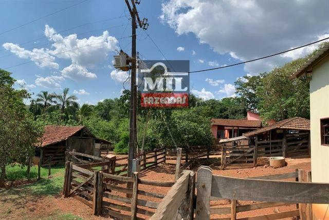 Fazenda 24 Alqueires ( 116.16 hectares )- Santa Cruz \ Cristianópolis-GO - Foto 4