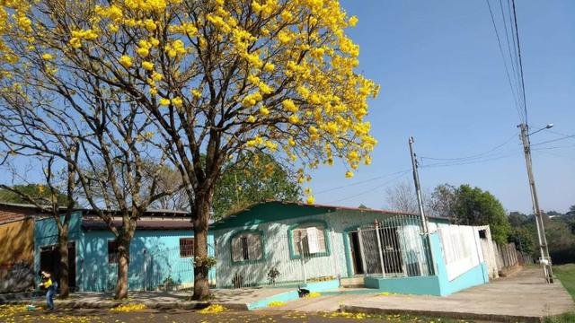 (CA2228) Casa na Kurtz, Santo Ângelo, RS - Foto 18