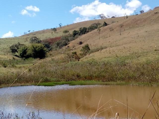 Área Guara x Cunha - Foto 15