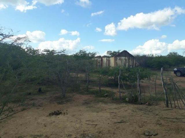 Fazenda para venda em santa cruz do capibaribe, centro - Foto 4