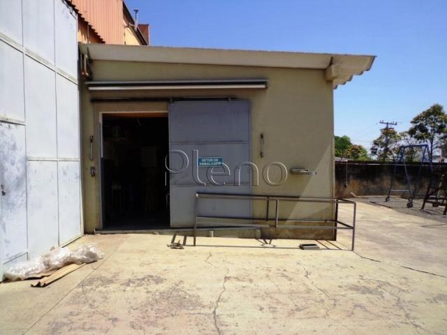 Galpão/depósito/armazém à venda em Jardim do lago, Campinas cod:BA015264 - Foto 8