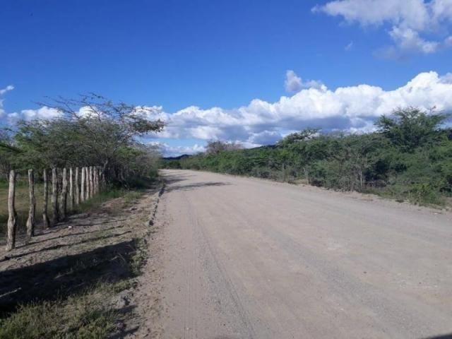 Fazenda para venda em santa cruz do capibaribe, centro - Foto 8