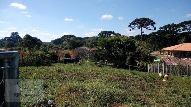 Chácara rural à venda, Campo Largo da Roseira, São José dos Pinhais. - Foto 13