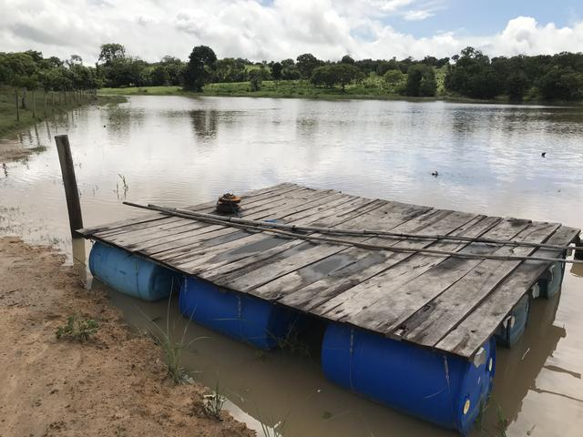 VENDO SÍTIO 22,6 Alq. próximo de Itapirapuã e Águas de São João- Goiás R$2Milhões - Foto 3