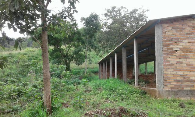 Vendo fazenda em Santa Rita FA - Foto 3