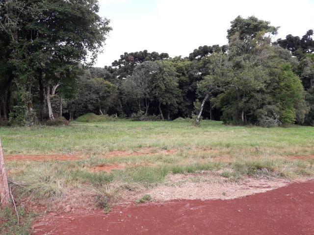 Terreno BR 386 Carazinho - Foto 3