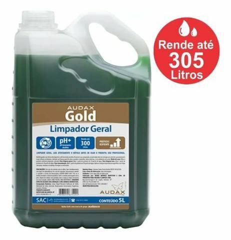 Gold limpador geral, Audax 5 L