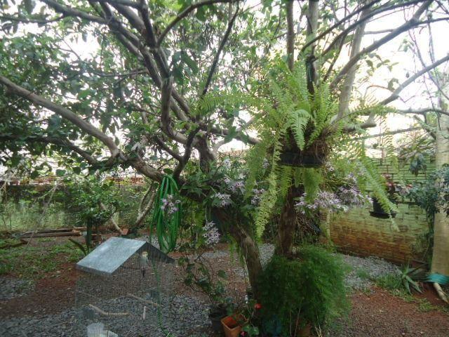 (CA1113) Casa na Cohab, Santo Ângelo, RS - Foto 2