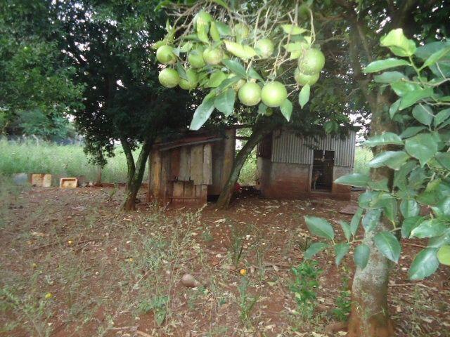 (CA2477) Casa no Parque Industrial, Santo Ângelo, RS - Foto 9