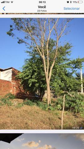 Vende-se 4,6 ha em Pirangi do Norte Parnamirim - Foto 4