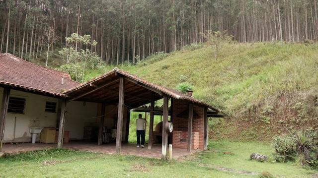 Fazenda com 400.000 Pés de eucaliptos,566 hectares - Foto 2