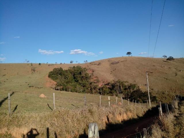 Área Guara x Cunha - Foto 2