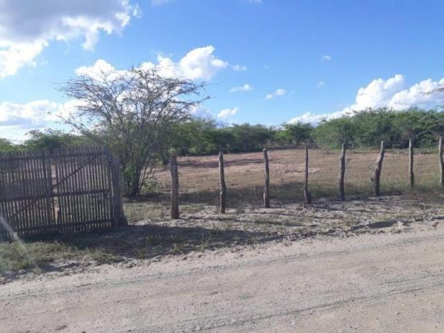 Fazenda para venda em santa cruz do capibaribe, centro - Foto 20