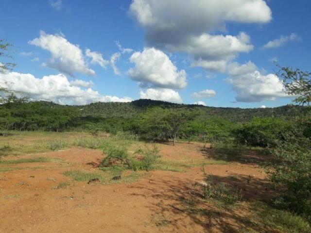 Fazenda para venda em santa cruz do capibaribe, centro - Foto 3