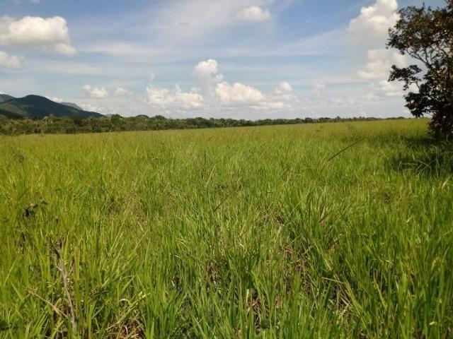 Vendo uma fazenda em rosário oeste - Foto 4