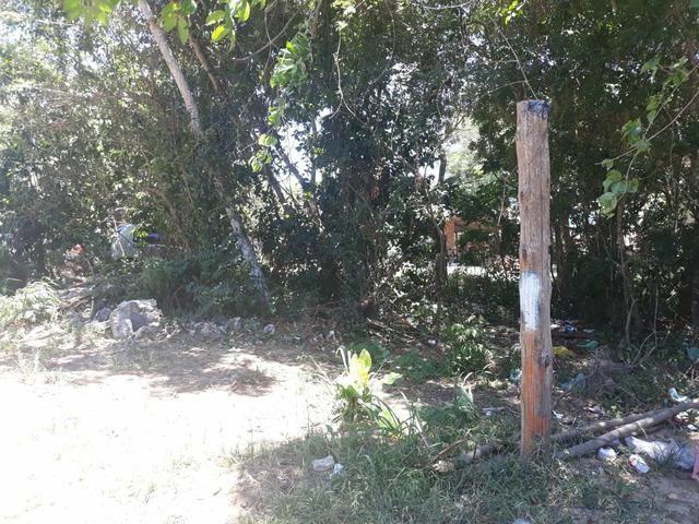 L Terreno no Bairro de Tucuns em Búzios/RJ - Foto 5