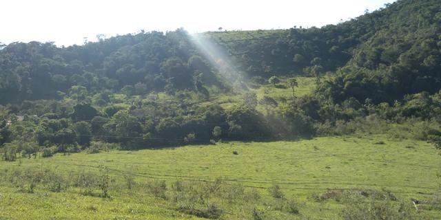 Fazenda - Foto 18