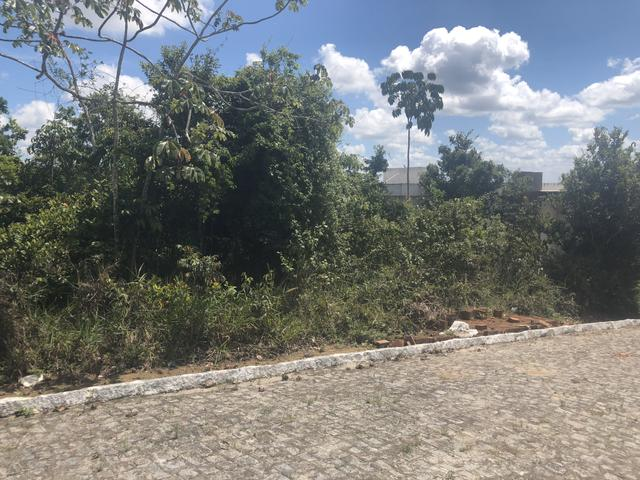Terreno Privê Mirante de Aldeia II - Foto 4