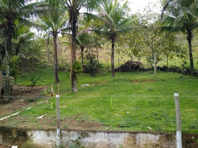 Sitio Viana 5 alqueires - Foto 17