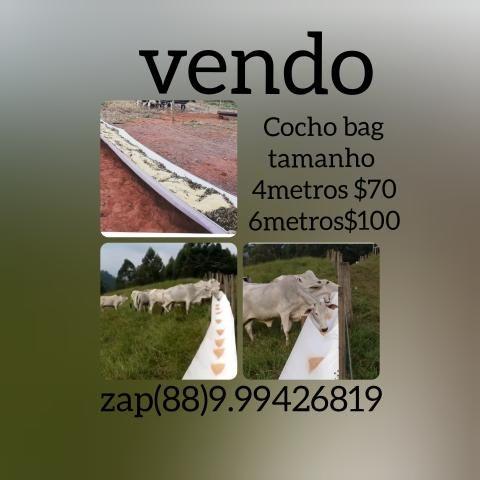 Cocho bag