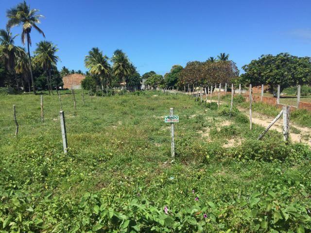 Terreno no Mosqueiro - Beira de Rodovia