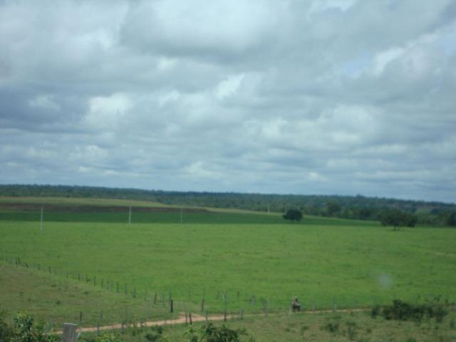 Fazenda em Pedro Afonso - 270 km Distante de Palmas - Foto 11