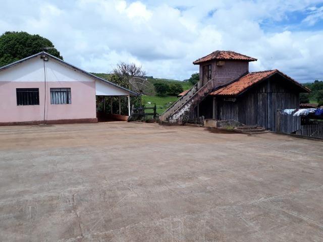 Sitio, 6 alqueires e meio, Siqueira Campos-PR - Foto 2