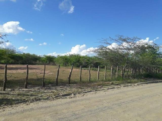 Fazenda para venda em santa cruz do capibaribe, centro - Foto 12