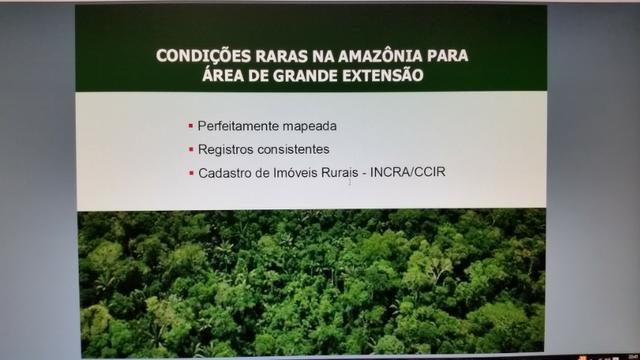 Fazenda na amazônia 913.000 hectares - Foto 8