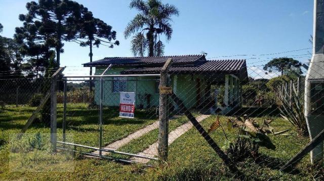 Chácara rural à venda, Campo Largo da Roseira, São José dos Pinhais. - Foto 2