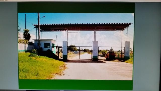 Fazenda na amazônia 913.000 hectares - Foto 9